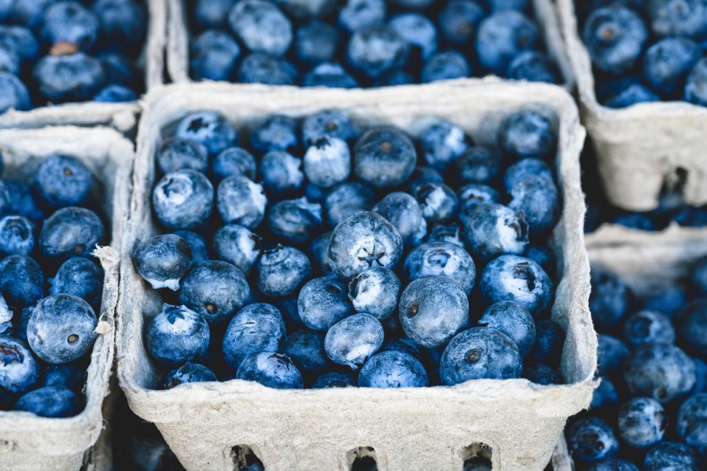 blueberry-1326154_1280